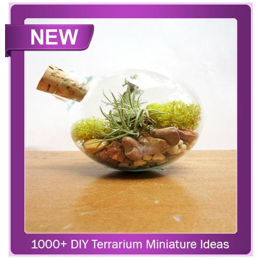 1000+ DIY Terrarium Miniature Ideas Download Latest Version APK