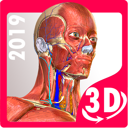 Anatomy Learning – 3D Atlas Download Latest Version APK