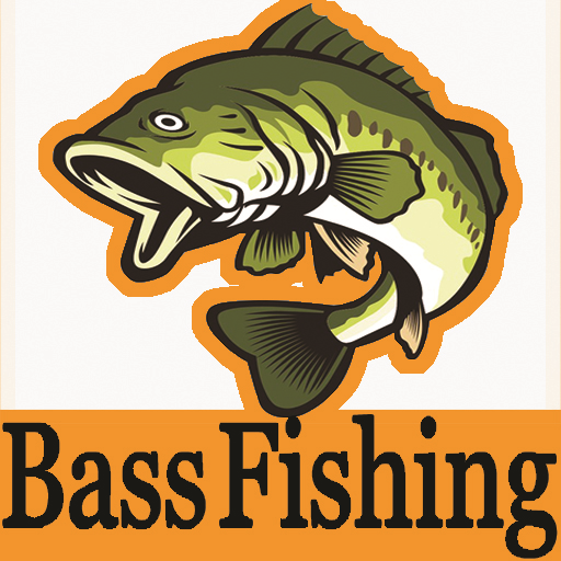 Bass Fishing Techniques Tips bass fishing lure Download Latest Version APK