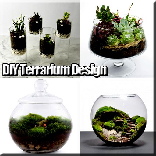 DIY Terrarium Design Download Latest Version APK