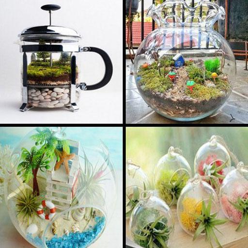 Design Terrarium Ideas Download Latest Version APK