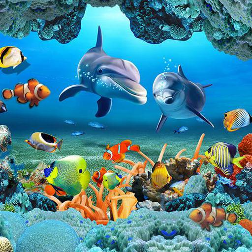 Fish Live Wallpaper 3D Aquarium Background HD 2018 Download Latest Version APK