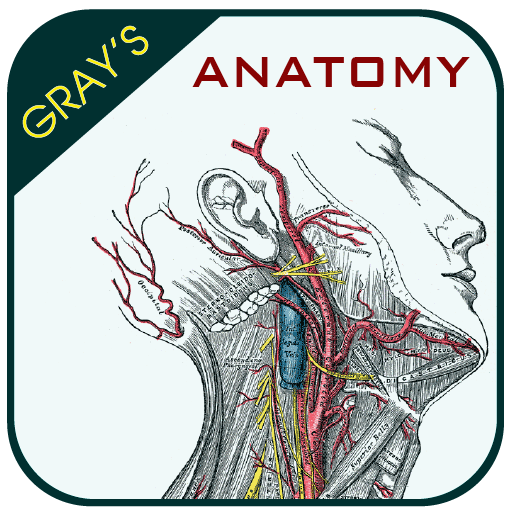 Grays Anatomy – Atlas Download Latest Version APK