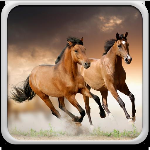 Horses Live Wallpaper Download Latest Version APK