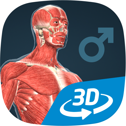 Human body male educational VR 3D Download Latest Version APK