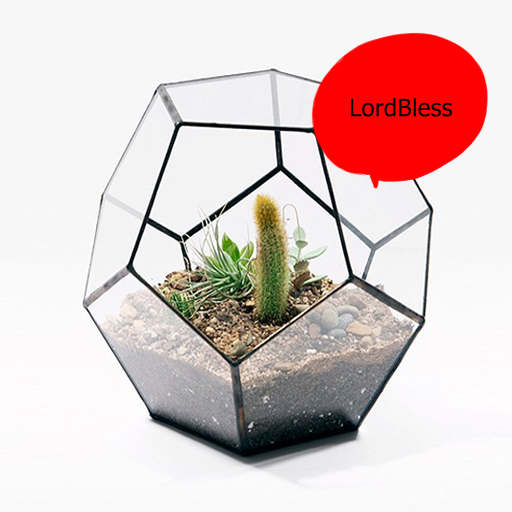 Latest Modern Terrarium Ideas Download Latest Version APK