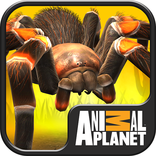 Real Scary Spiders Download Latest Version APK
