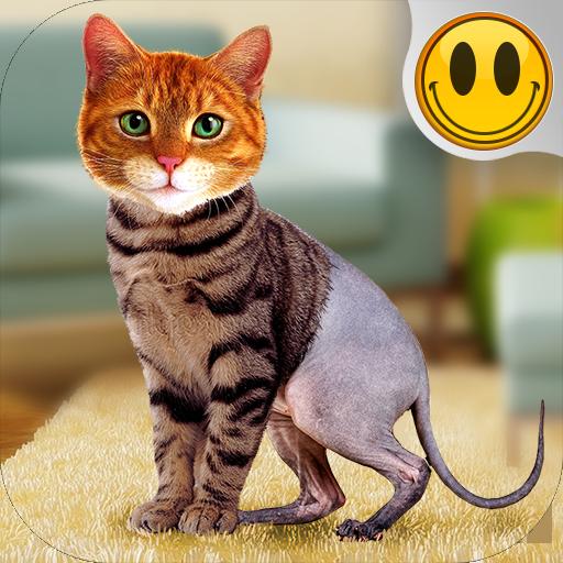 Simulator Morph Cat Download Latest Version APK