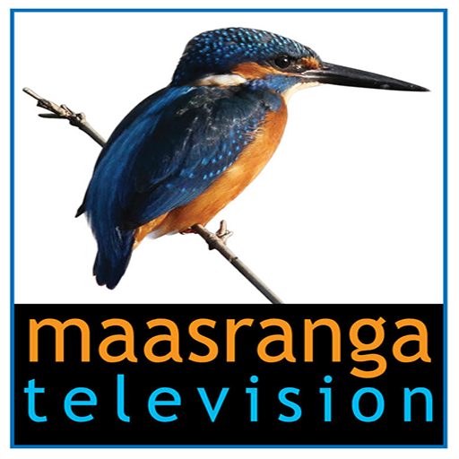 maasranga television Download Latest Version APK