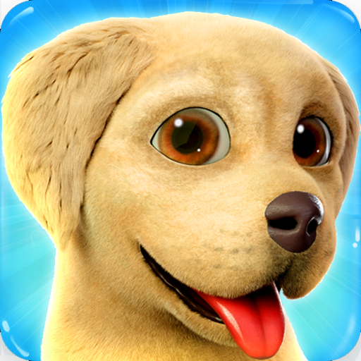 Dog Town Pet Shop Game Care Play with Dog Download Latest Version APK