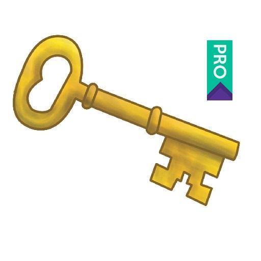 Password 256 -Pro Download Latest Version APK